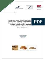 Beta-glucanos de diferentes fuentes