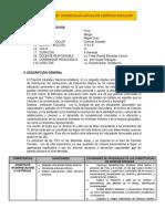 PROGRAMACIÓN  CURRICULAR ANUAL DE CCSS2019.docx