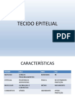 aula_Tec._Epitelial.pdf