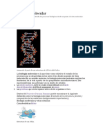 biologia celular 1.docx