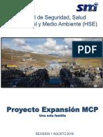 MANUAL HSE SMI REV 01.pdf