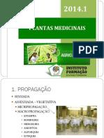 07 25 49 Aula2 Plantasmedicinais