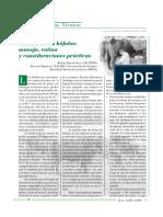 09 ORDENO DE LA BUFALAS.pdf