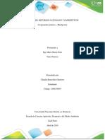 Informe Practica Biodigestor