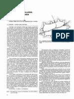 [xxxx] Poliorcética gallega.pdf