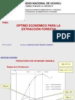 OptimoEconomico 4.ppt