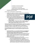 Resumen Texto -La Experiencia de Aprendizaje Mediada y Los Instrumentos Psicologicos
