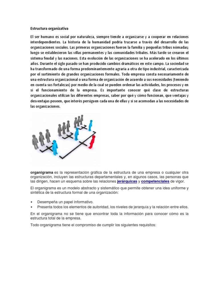 Estructura Organizativa Deforestación Bosques