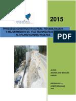 Mendozaandres2015.pdf