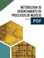 METODOLOGIA_DE_GERENCIAMENTO_DE_PROCESSOS_DE_NEGOCIO.pdf