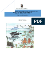 8) Guía 3 - Reino animal