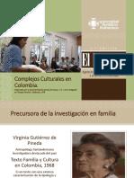Complejos Culturales en Colombia