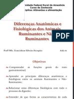 Aula 1 - Diferenças Anatômicas e Fisiológicas Entre Animais Ruminantes e Não-ruminantes
