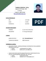 Curriculum Vitae BRUNO FALSO