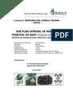 SUB_MANEJO_ASAI.pdf