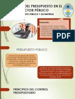 Control Del Presupuesto en El Sector Publico-2