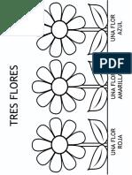 Flores Colorear