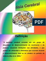 AULA2_PCE DIVISÃO DUPLAS E TRIOS