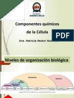 Cuestionario de Sistema Circulatorio y Respiratorio-EnFERMERIA