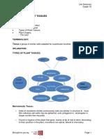 1591_fdoc.pdf