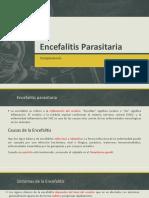 Encefalitis parasitaria