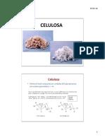 Celulosa clase.pdf