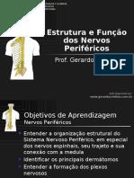 T9_Nervos_Perifericos_e_Plexos.pdf