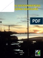 dinamicas socioambientais na amazonia_brasileira.pdf