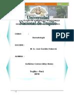 275664664-ANALISIS-DE-HARINA-DE-TRIGO-Y-PAN-docx.docx