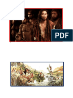 Imágenes de la T. Evolución