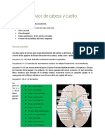 310902042-Nervios-de-cabeza-y-cuello-docx.docx