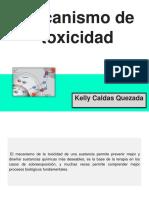 2 Mecanismo de Toxicidad (1)