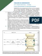 Metabolismo de Carbohidratos - A.J. Brito M.