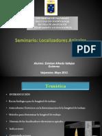 SeminarioLEA.pdf