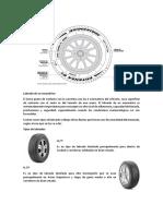 Lectura d un neumático.docx