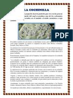 LA COCHINILLA.docx