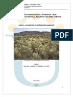 358021 – VALORACIÓN ECONÓMICA DEL AMBIENTE.pdf