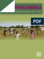 AFRODESCENDENCIA.pdf