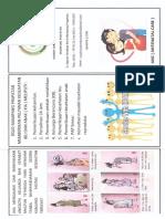 leaflet ANC (PONEK)
