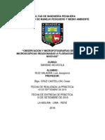 FLORACIONES ALGALES NOCIVAS.docx