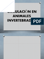 Tipos de Circulación-.pdf