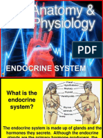 10 Biology 1-16-07 Endocrine System Feedback Systems