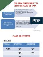 36234_7000002023_03-30-2019_125840_pm_1._ppt_PRESUPPUESTO_DE_EFECTIVO.pdf