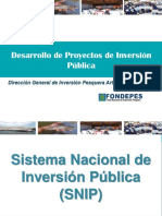 Seminario Desarrollo de PIP.pptx