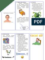 Leaflet Cacar Air