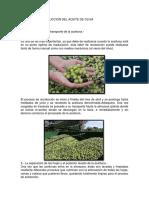 PROCESO DE PRODUCCION DEL ACEITE DE OLIVA.docx