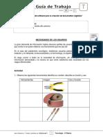 6Basico - Guia Trabajo Tecnología  - Semana 01.pdf