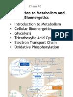 Bioenergetics, ETC, Oxid Phospho for CG