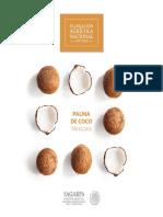 PalmadeCocoMexicana.pdf