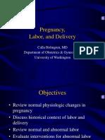 pregnancylaboranddeliveryDelivery.ppt